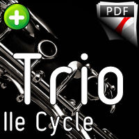 Variations Goldberg - Trio Clarinettes - BACH J. S.