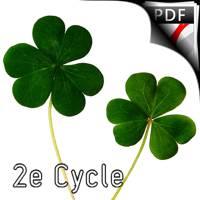 Irish Dance Jigs - Quintette de Clarinettes - TRADITIONNEL IRLANDAIS