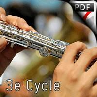 Serenade Op 25 - Trio de Flûtes - BEETHOVEN L. V.