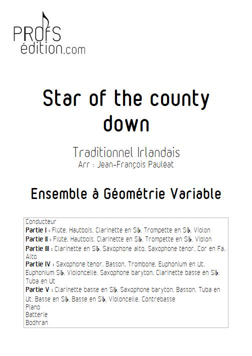 Star of the county down - Ensemble Variable - TRADITIONNEL IRLANDAIS - front page