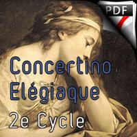 Concertino Elegiaque (La fille aux cheveux de lin) - Orchestre Symphonique - DEBUSSY C.